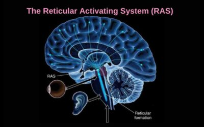 Unlock the power of Reticular Activating System (RAS)